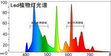 LED植物灯光谱图